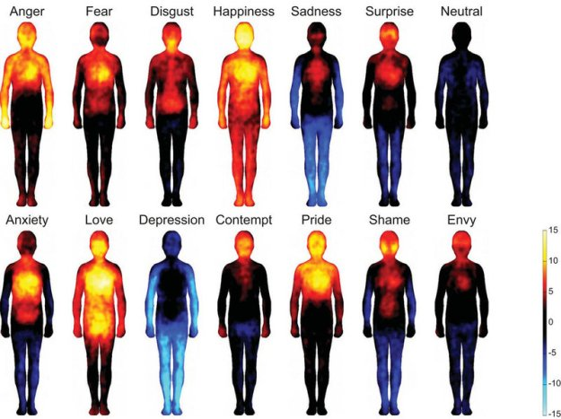 People drew maps of body locations where they feel basic emotions (top row) and more complex ones (bottom row). Hot colors show regions that people say are stimulated during the emotion. Cool colors indicate deactivated areas. Image courtesy of Lauri Nummenmaa, Enrico Glerean, Riitta Hari, and Jari Hietanen.